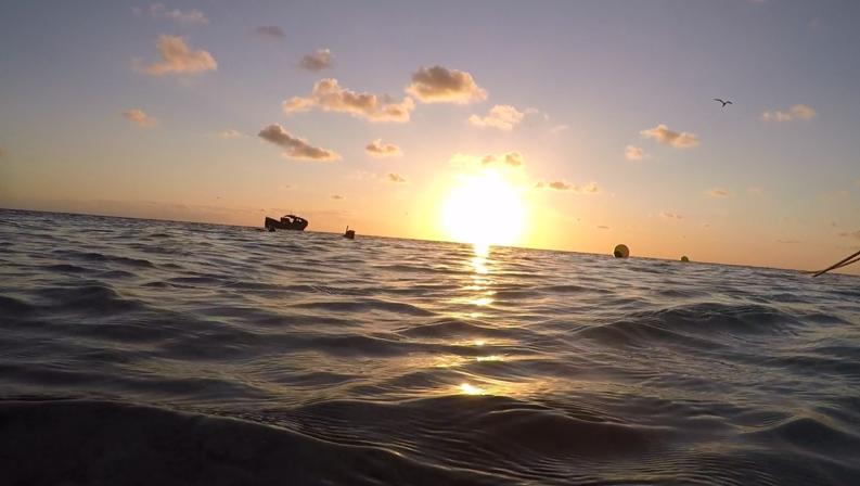 Snorkling i solnedgang slår sjeldent feil