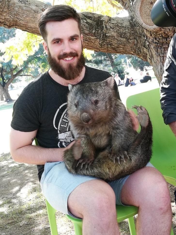 Helt greit å få holde en wombat på campus